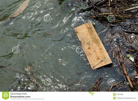 woodworking float floating wooden plank in lake water royalty free stock