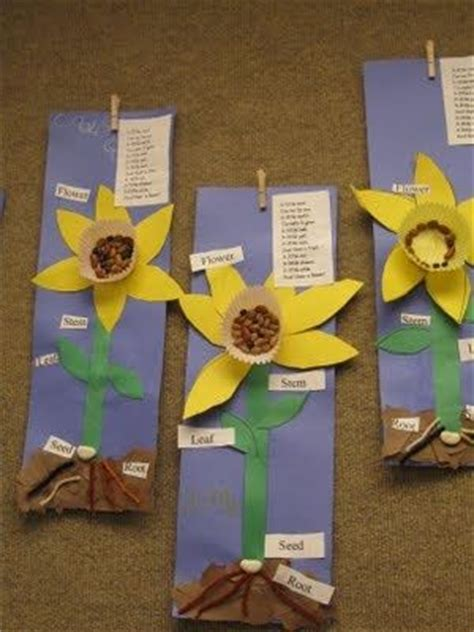 plant crafts for parts of a flower flower chart a science