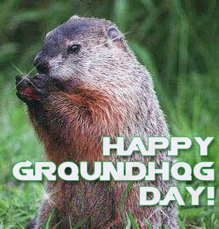 groundhog day expression it s groundhog day again great thoughtsgreat thoughts
