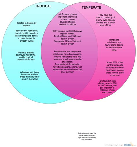tropical and temperate rain forests venn diagram creately