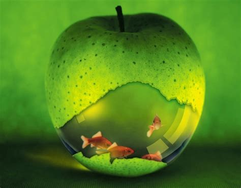 apple aquarium abstract background wallpapers on desktop nexus image 864651