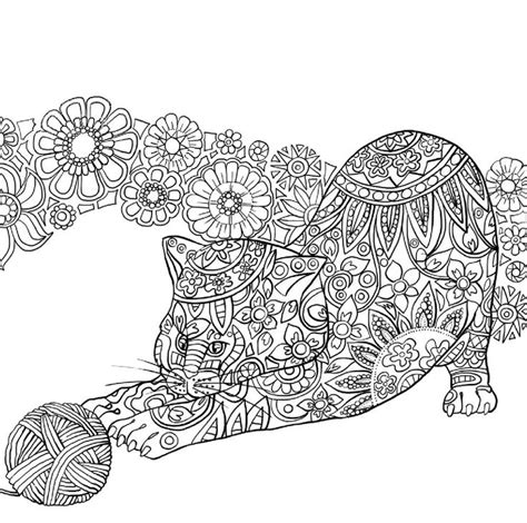 cat for adults cat coloring pages for adults intended to invigorate to