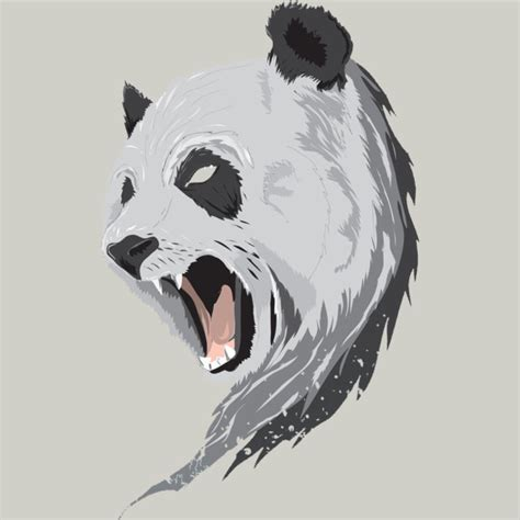 angry panda illustration google search illustration