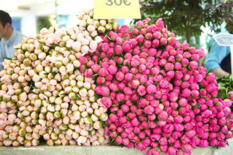 peonies in season peonies flower markets this is glamorous