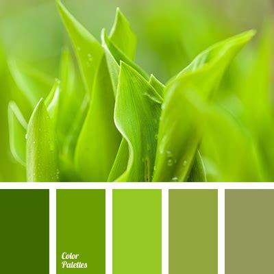 light green color light green and green color color palette ideas