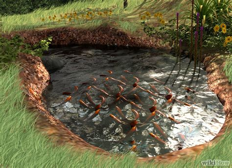 building backyard pond 7 ideas for building a koi fish and backyard pond home