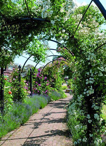 Garden Arbor Archway 17 Best Ideas About Garden Archway On Garden