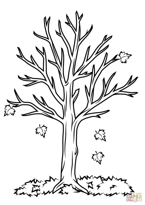 tree colouring in pages fall tree coloring page free printable coloring pages