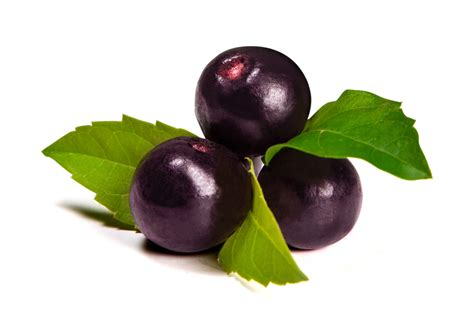 acai berry for sale promo acai berry juice dietary food supplement