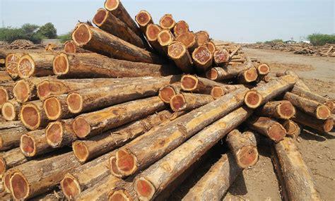 log woodworking products raj kripal lumbers