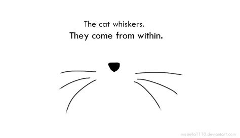 cat nose and whiskers the cat whiskers come from within by missiella1110 on