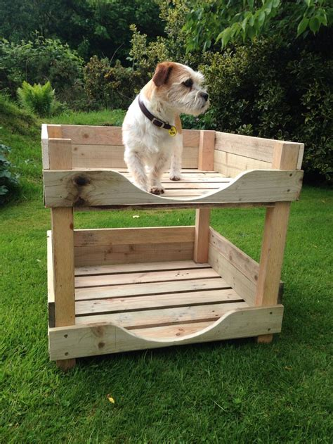 puppy bunk beds 1000 ideas about bunk beds on beds