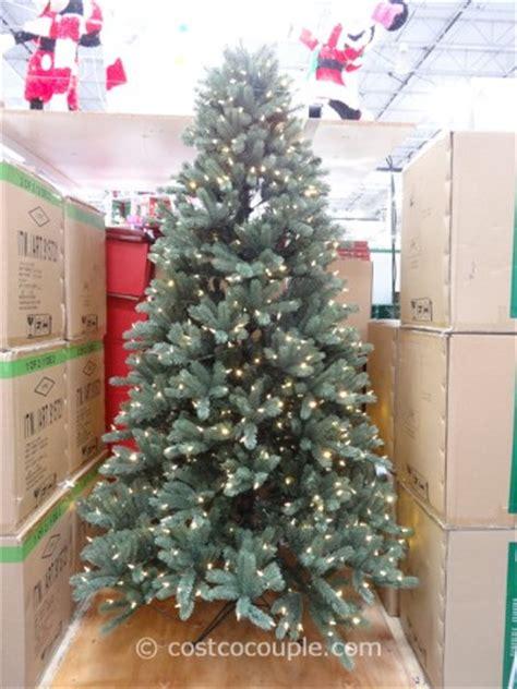 dual color tree dual color tree danemccaslin co