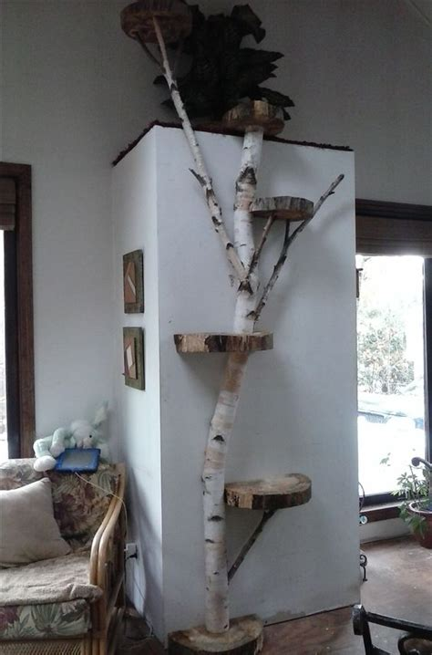 tree for cats the best cat tree evah and 5 also rans mousebreath