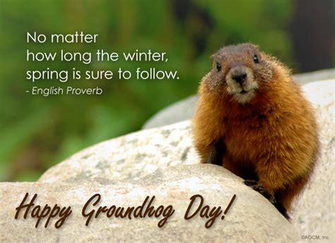groundhog day 2015 best photos of groundhog day happy groundhog