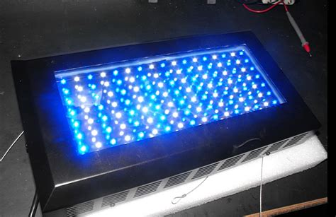 aquarium led lights what you should before purchasing an led aquarium