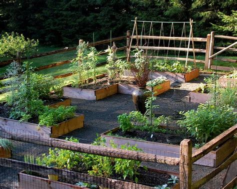 home vegetable garden design vegetable garden designs and plans interior design
