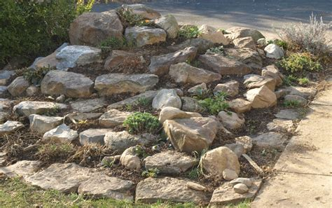 about rock garden overhauling the rock garden a project