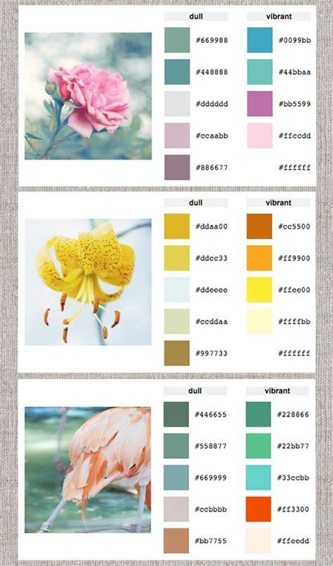 paint color scheme generator color palette generator design it