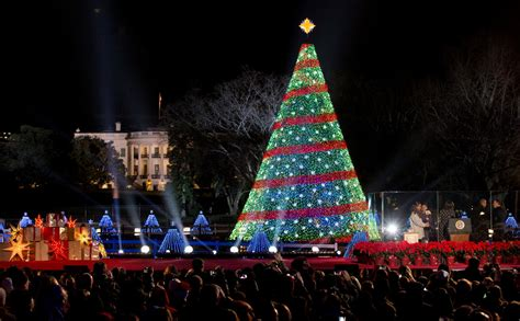 national tree lighting ceremony 2014 obama lights the national tree political news