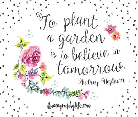 quotes on gardens and flowers the 25 best flower quotes on flower qoutes