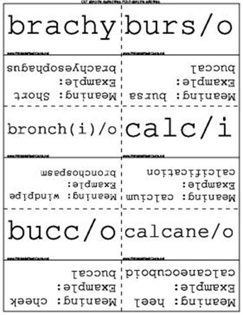 how to make terminology flash cards 24 best images about terminology on