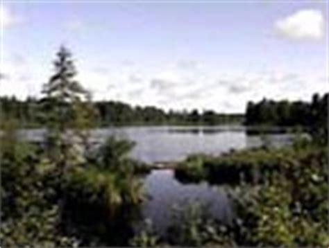 bob ross painting classes roanoke va crawling lake