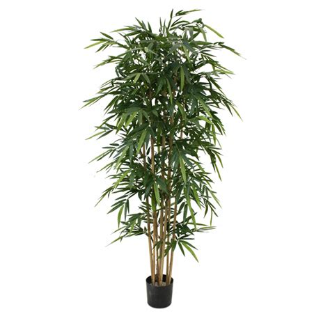 quality artificial trees uk quality artificial bamboo tree 210cm maxifleur artificial