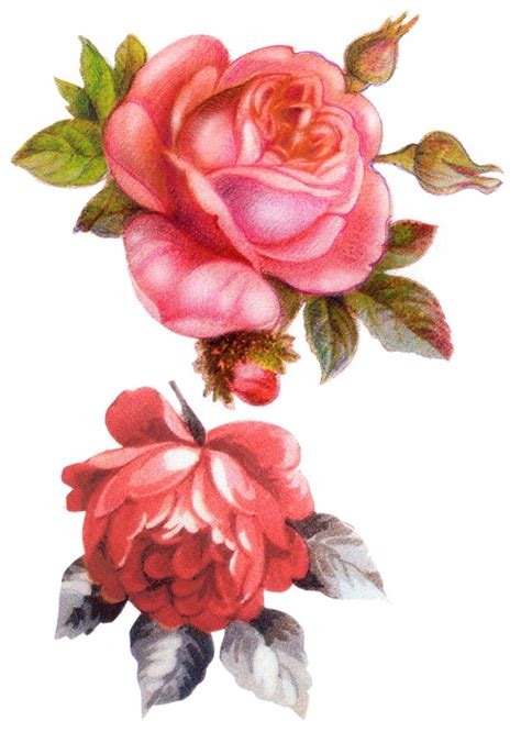G 220 Ller On Vintage Roses Decoupage And