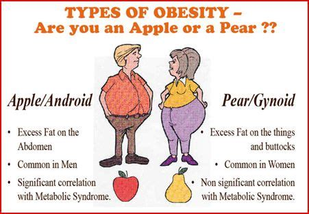 meaning of waist obesity definition health info