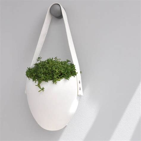 white hanging planter 100 white hanging planter columnea arguta in white