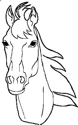 head horse coloring pages horse coloring pages