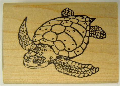sea turtle rubber st sea turtle st