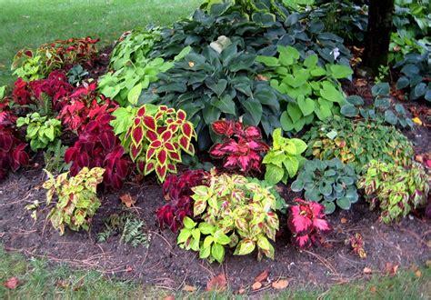 flower garden plans flower garden plans zone 4 garden design ideas