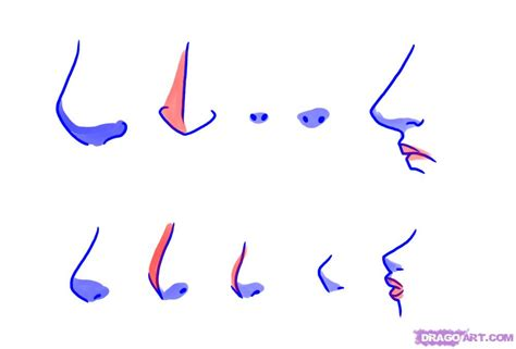 how to draw noses anime nose step by step memes