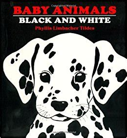 black and white picture books for babies baby animals black and white 9780881063134