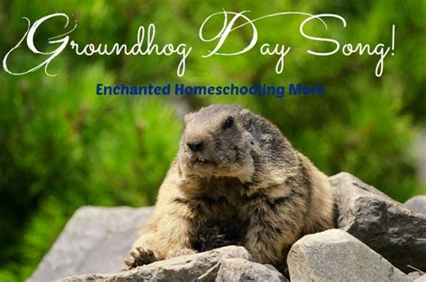 groundhog day song 17 best images about groundhog s day on