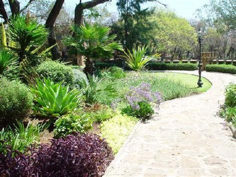 Garden Bulawayo Gardens Picture Of Bulawayo Bulawayo Province Tripadvisor