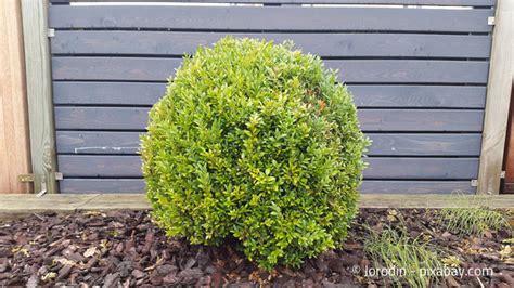 Wie Sieht Der Garten Aus by Wie Sieht Der Perfekte Winter Garten Aus Garten