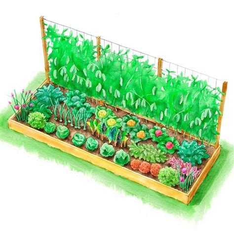 how to set up a vegetable garden bed planting plans inspired by the white house kitchen garden