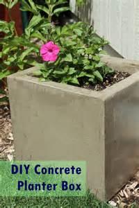 diy modern minimal concrete planter boxes