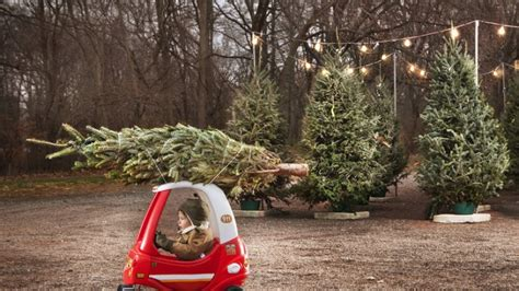 wo weihnachtsbaum kaufen wo den perfekten weihnachtsbaum kaufen kann berlin