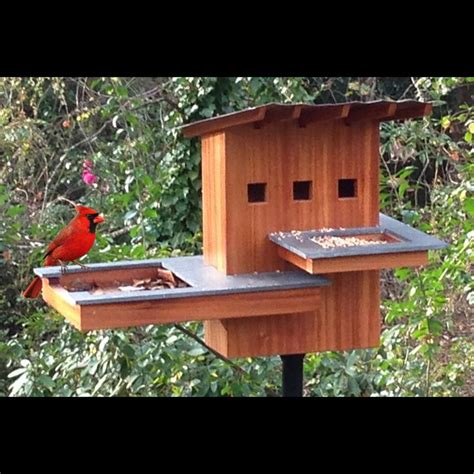 birdhouse woodworking plans bird house spa and resort woodworking plan by tobacco road