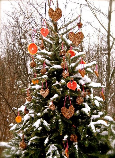 decorations for outdoor trees decorate an outdoor tree for animals dot