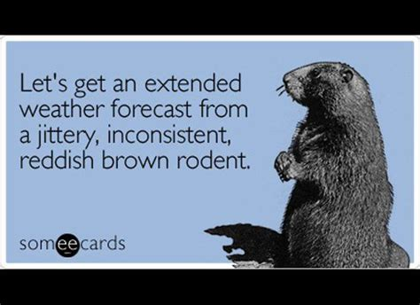 groundhog day quotes groundhog day winter quotes and winter quotes on
