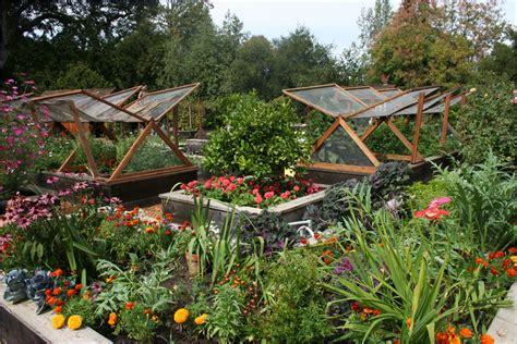 growing vegetable garden tips for growing your own vegetable garden one decor