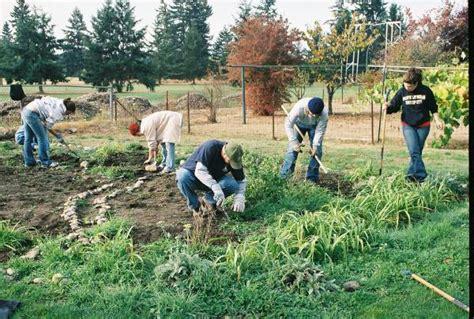 Garden Of Commune File Community Garden Jpg