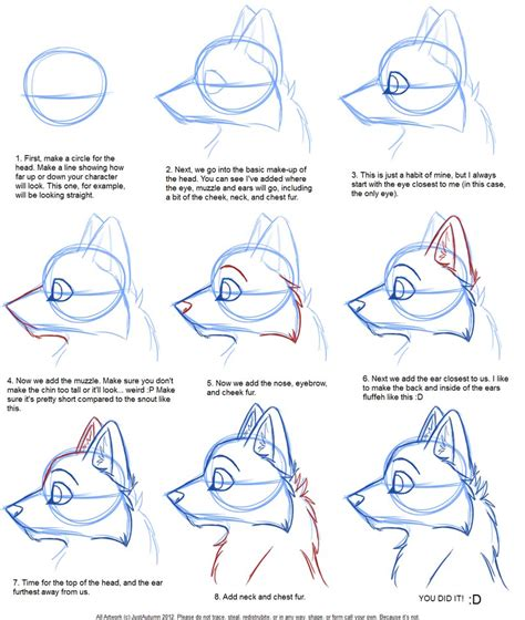 drawing tutorials how to draw canine profile tutorial by justautumn on