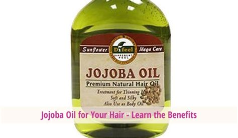 jojoba benefits jojoba for your hair learn the benefits