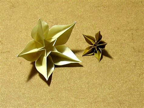 origami flower carambola carambola sprung happy folding